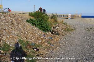 Albenga zona Foce Centa 9-9-2013 13