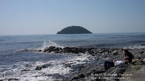 Albenga Isola Gallinara fpA1 M