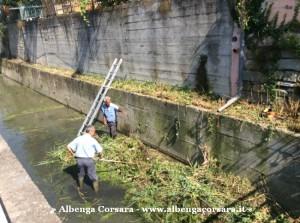 1 Pulizia Avarenna - Albenga 8-8-2014