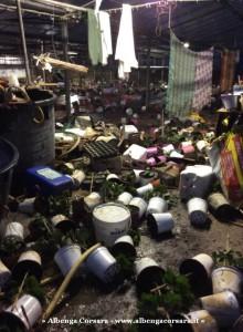 10 Alluvione Albenga e sopralluogo Paita 12-11-2014