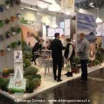 Albenga Mb Plant Essen 28 1 2014
