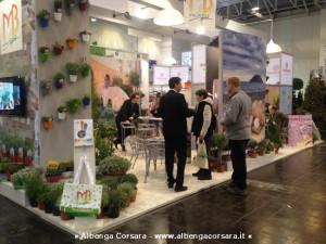 Albenga Mb Plant Essen 28-1-2014