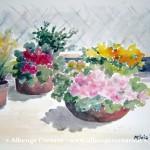 5 Savona Mostra Milvia Bortoluzzi Ciotole fiorite acquerello su carta 28x385 2007