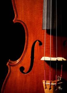 violino particolare 1