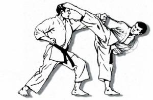 Karate disegno 01