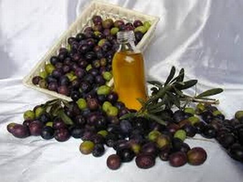 olive e olio generica