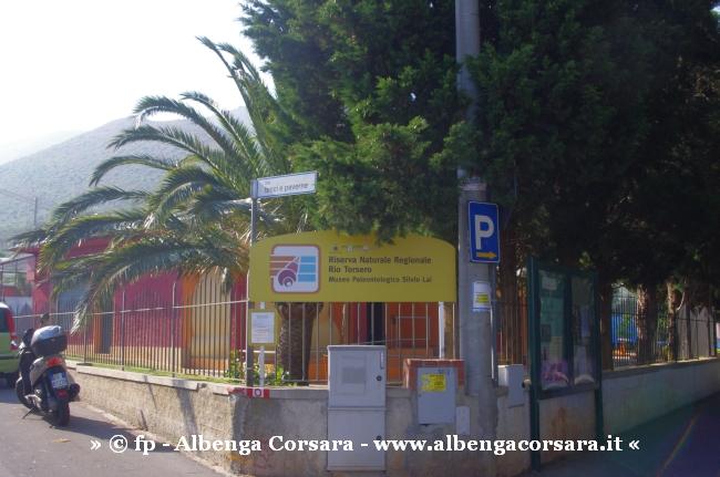 4  Ceriale - Museo Paleontologico Slivio Lai