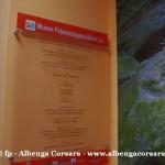 41 Ceriale Museo Paleontologico Slivio Lai