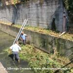 1 Pulizia Avarenna Albenga 8 8 2014