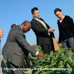 5 Zimbabwe e Alassio