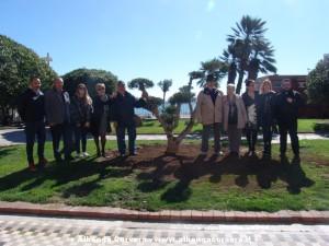 fotogruppo bonsai