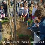 1 Festa degli Alberi Alassio 1