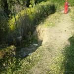 1 Via Iulia Augusta pulizia