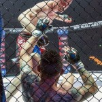 7 Fight schiesaro1