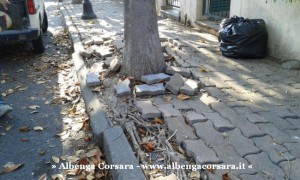 8 - Lavori Albenga - zavattini