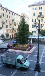 Allstimento albero di Natale 2015