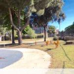 01 Parco Cotta