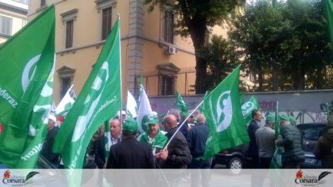 02 - Agricoltori Cia Roma