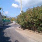 05 Strada Massaretti Bastia 1