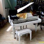 13 norcia strumenti pianoforte