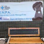 02 Spiaggia cani Vadino Albenga