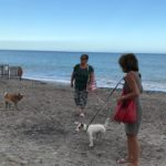 14 Spiaggia cani Vadino Albenga