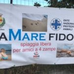16 Spiaggia cani Vadino Albenga