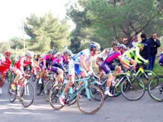 Trofeo Taigueglia gara