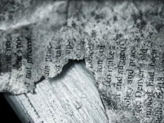 libro antico frammento