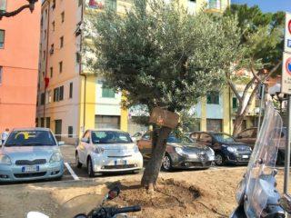 03 Riaperta Piazza Matteotti Albenga 2018