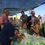 07 Spiaggia libera Amare Fido Albenga 2018