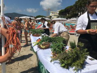 spiagge didattiche aromi di Liguria 2