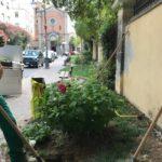01 Manutenzione e cura verde pubblico Albenga 2018