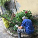 03 Manutenzione e cura verde pubblico Albenga 2018