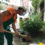 04 Manutenzione e cura verde pubblico Albenga 2018