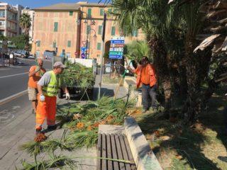 01 Piazza del popolo pulizia Albenga