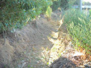 01 Pulizia rii e fossati ad Alabenga 2018