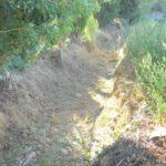 01 rii e canali Albenga