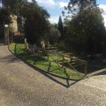 Villa Fiske 2