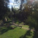Villa Fiske1