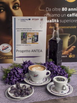 set violette progetto Antea
