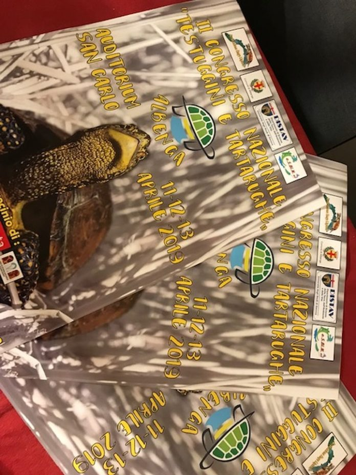 07 II Congresso nazionale testuggini e tartarughe Emys Albenga