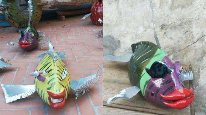 Pesce tigre e pesce pirata di Paolo Anselmo