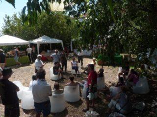 Festa delle erbe a Rollo di Andora
