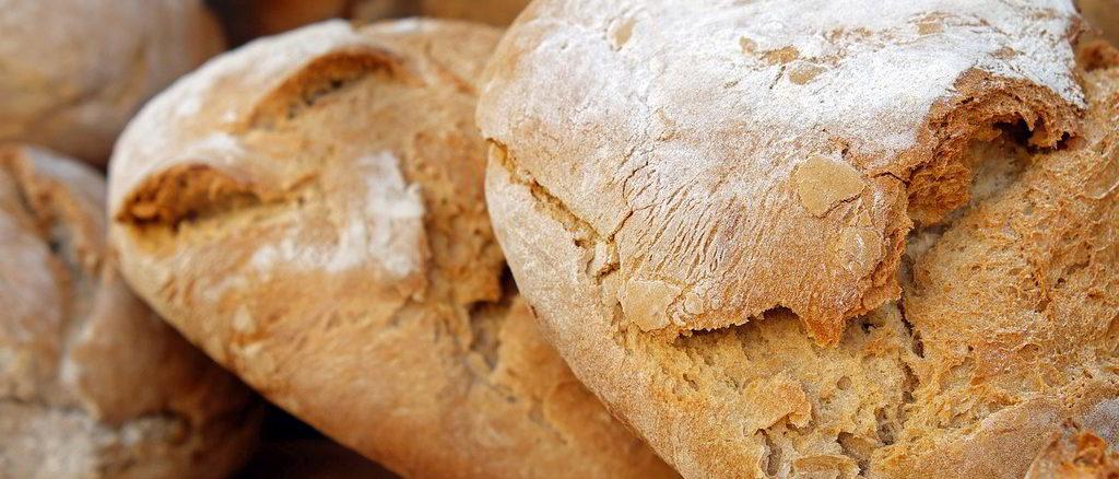 Pane e panini