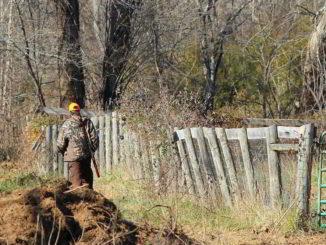 cacciatore nei boschi