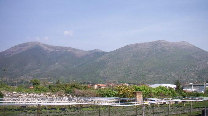 Campi e Alpi liguri (SV)