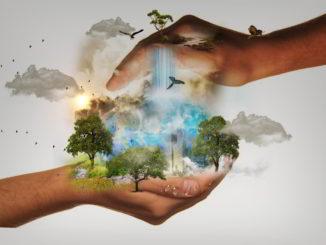 Mondo tra le mani