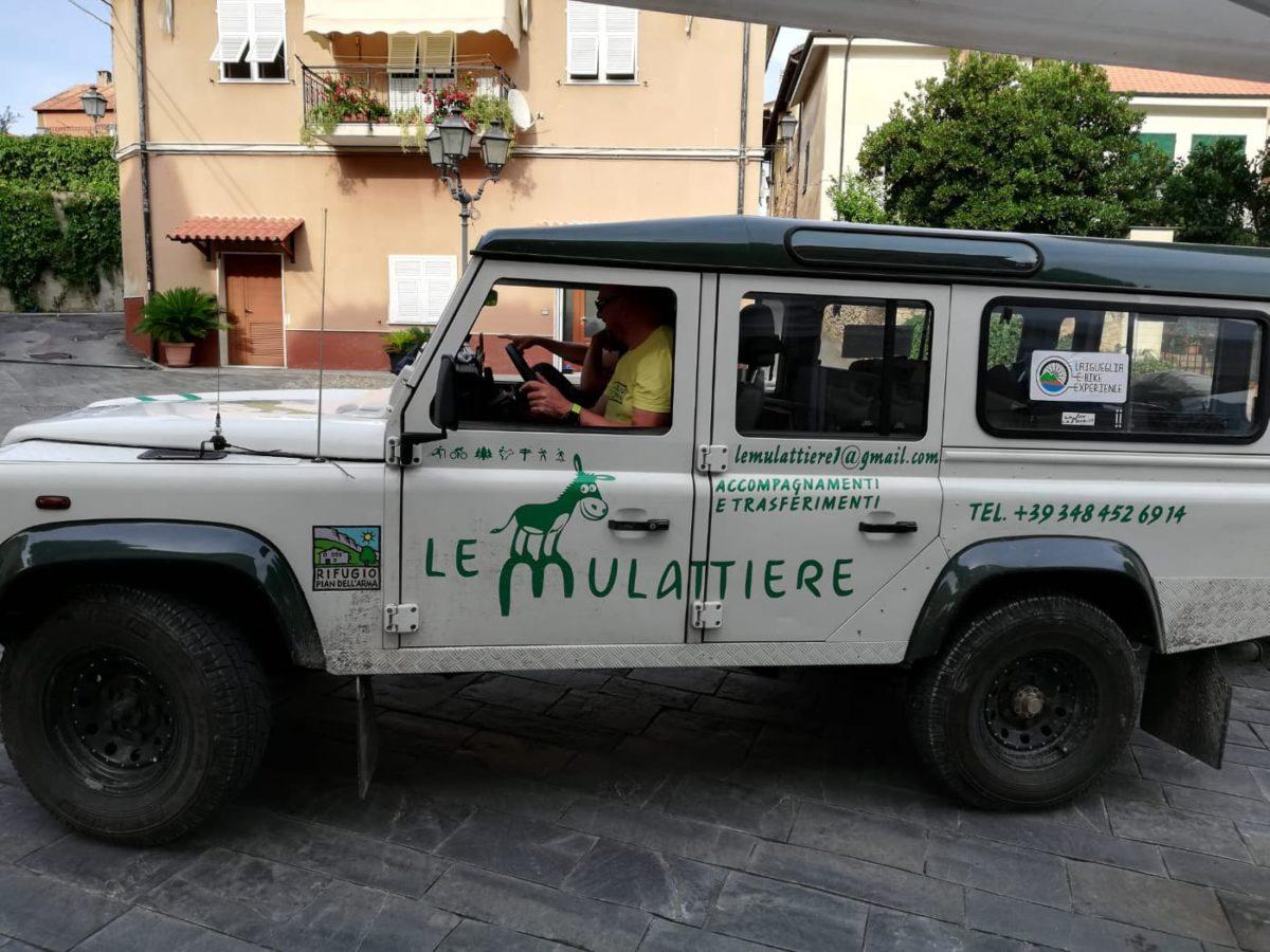tour torri saracene 7