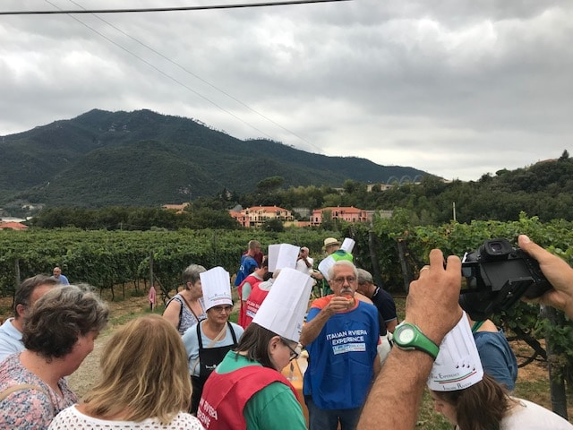 wine experience 4